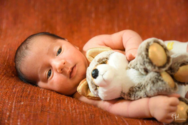 bébé et doudou photographe serre poncon